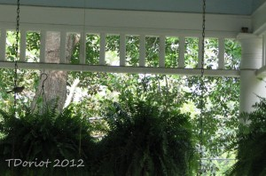 The Finch pair on the front porch. One on the porch swing chain and the other on the ledge under the eve.