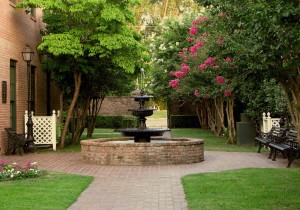 fountain in a courtyard with pink flowered trees