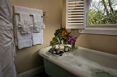 Picture of a tub in the bathroom with a window in the background.